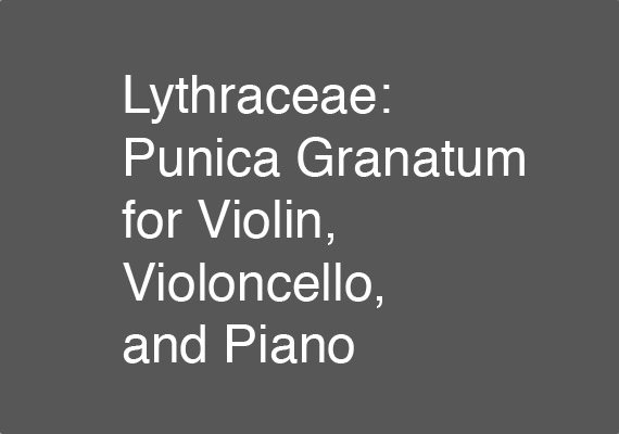 The 12 July 2018 performance of <I>Lythraceae: Punica Granatum</I> at the Valencia International Performance Academy and Festival
